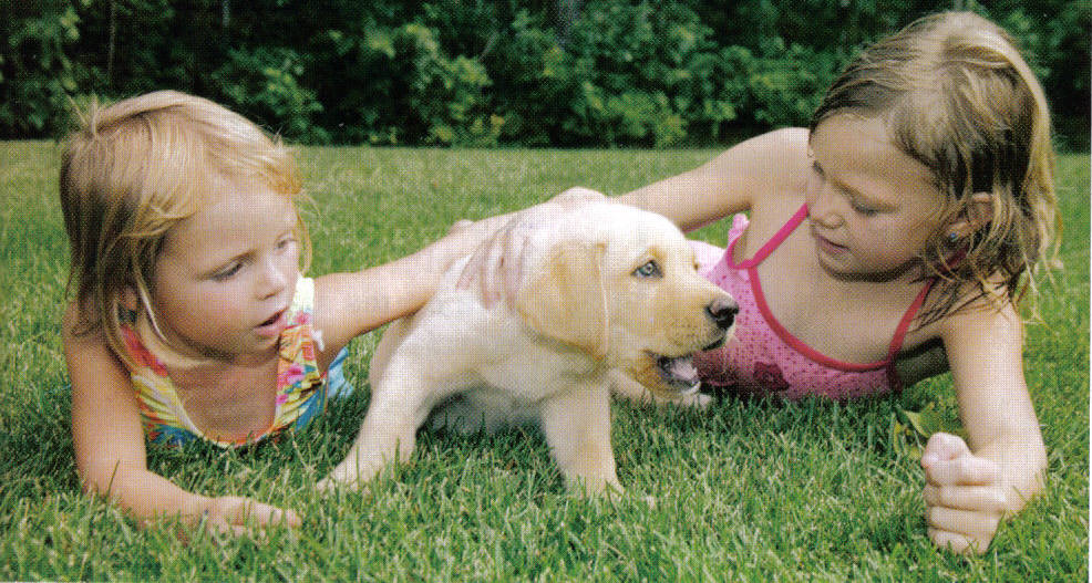 Two girls playing with a puppy in the grass.