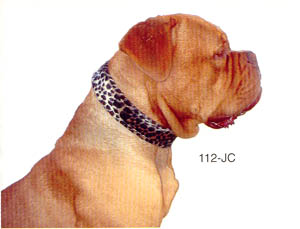 JAGUAR PRINT DOG COLLARS